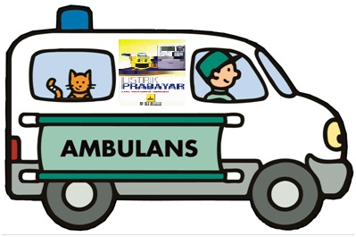ambulan_pln
